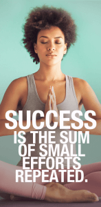 Success-is-the-sum-of-small-efforts-repeated..